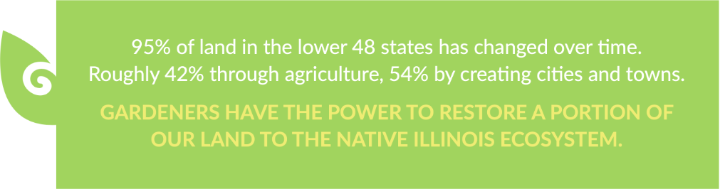 95% of land in the lower 48 states has changed over time.Roughly 42% through agriculture, 54% by creating cities and towns.Gardeners have the power to restore a portion of our land to the native Illinois ecosystem.