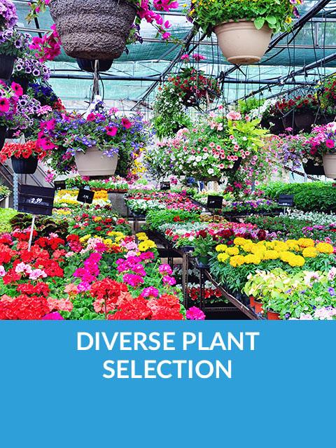 Diverse Plant Selection