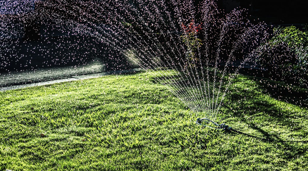 Best Time of Day to Water Lawn