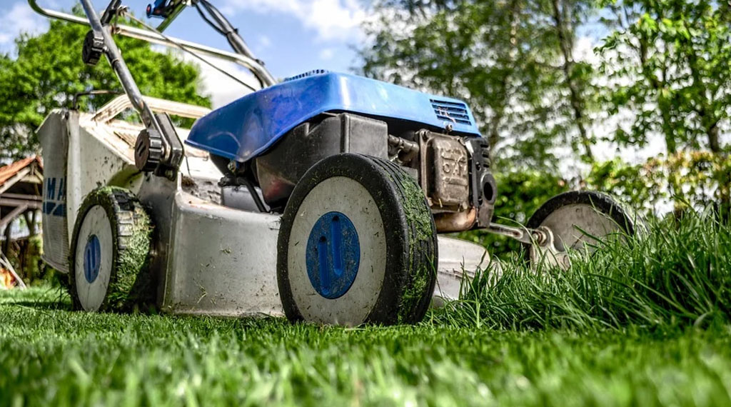 Don't Mow Your Grass Too Short