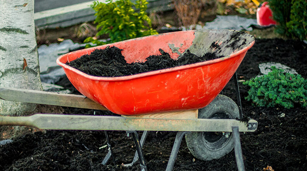Plan Ahead with this gardening checklist