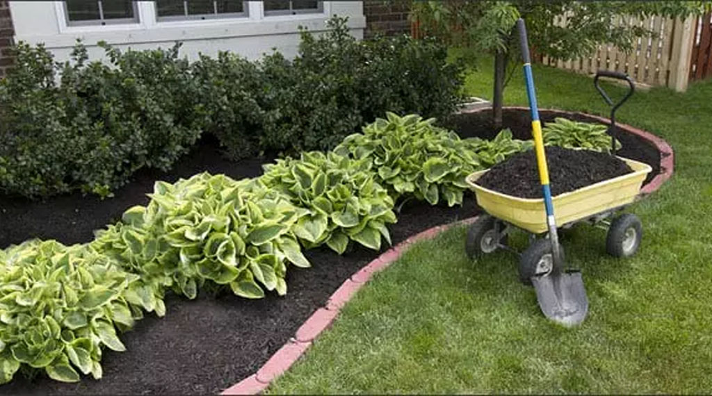 Using Mulch in Landscape Beds