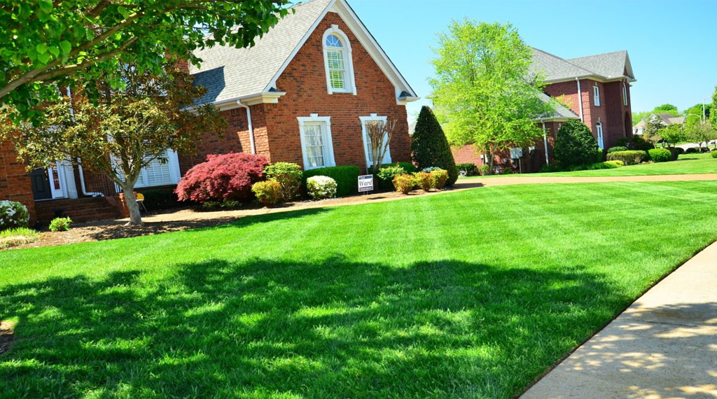 Lawn care tips for the Illinois home