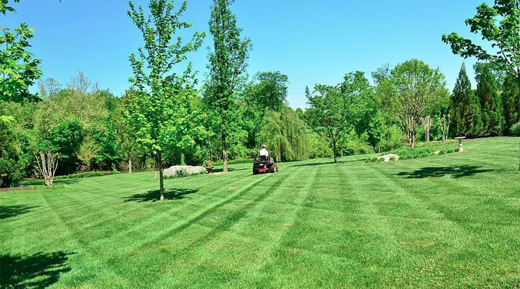 Mowing Alternate Directions
