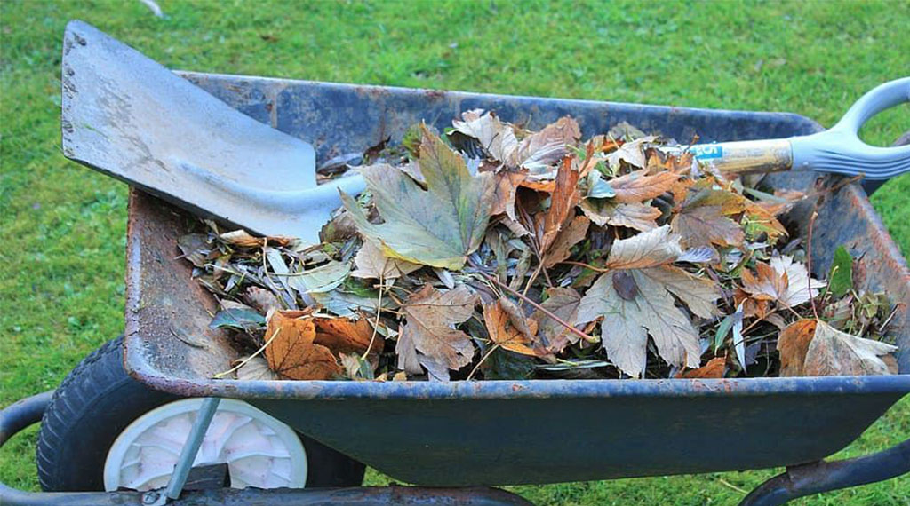 Saving Fall Leaves for Compost