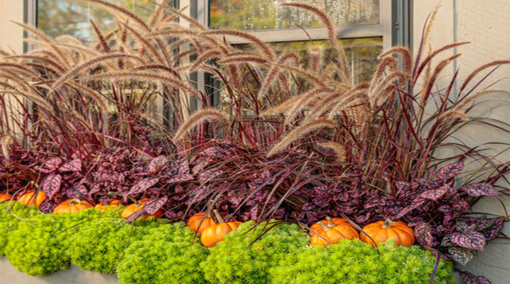 5 Tips for a Festive Winter Container